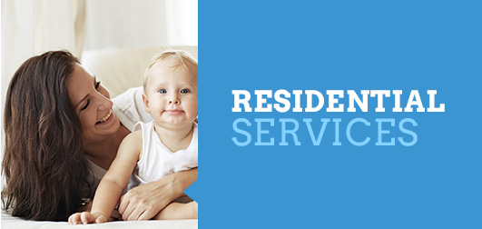 Residential Pest Services