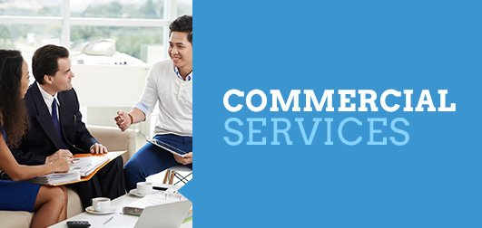 Commercial Pest Services